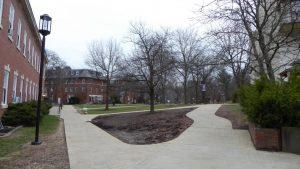 A deserted quad March 17. Photos by Jade Miley.